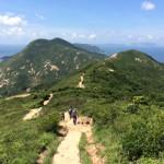 Le Mémo du 29 juin photo de Dragon's back dans les hauteurs de Shek O