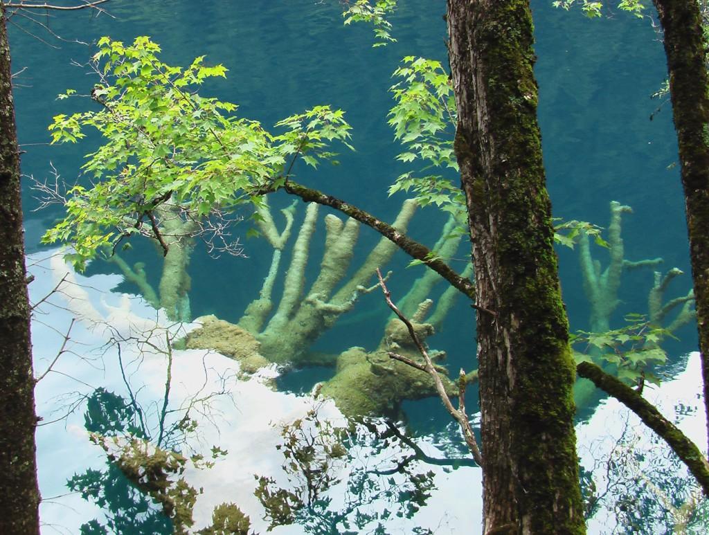 Jiuzhaigou Lac 10 C