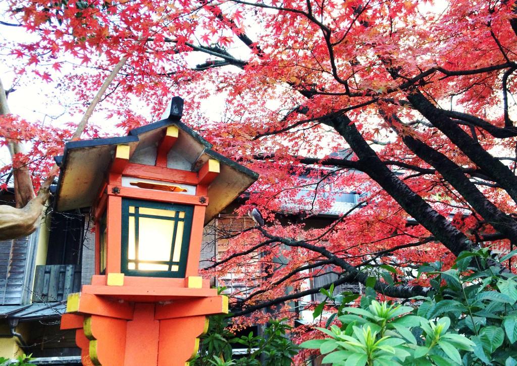 Kyoto Motoyoschicho 3