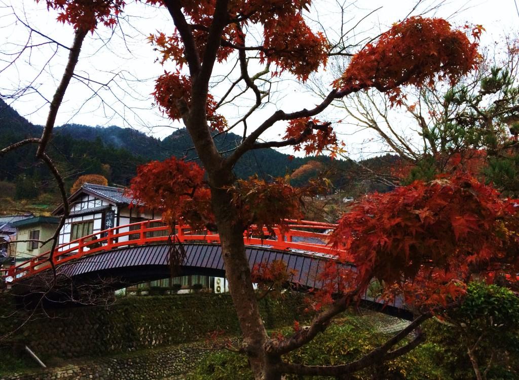 Muro-gawa river 2