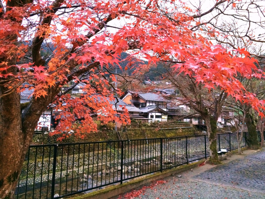 Muro-gawa river 3