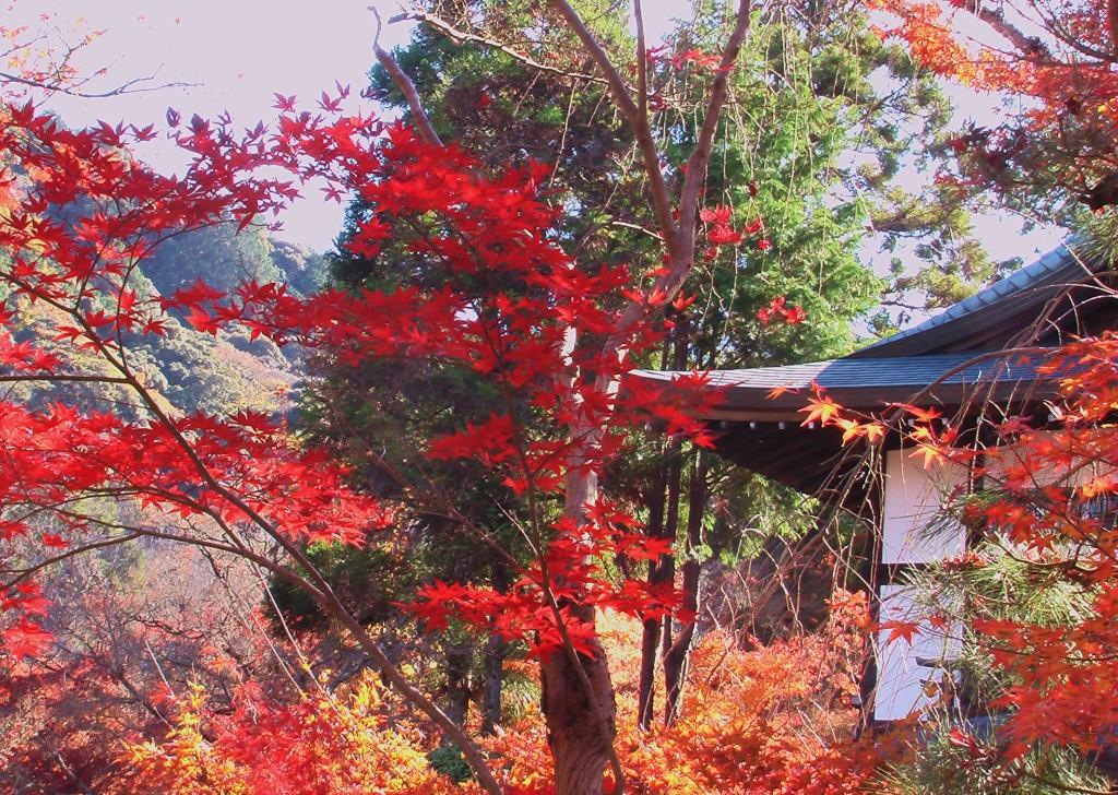 Nanzen-ji 3