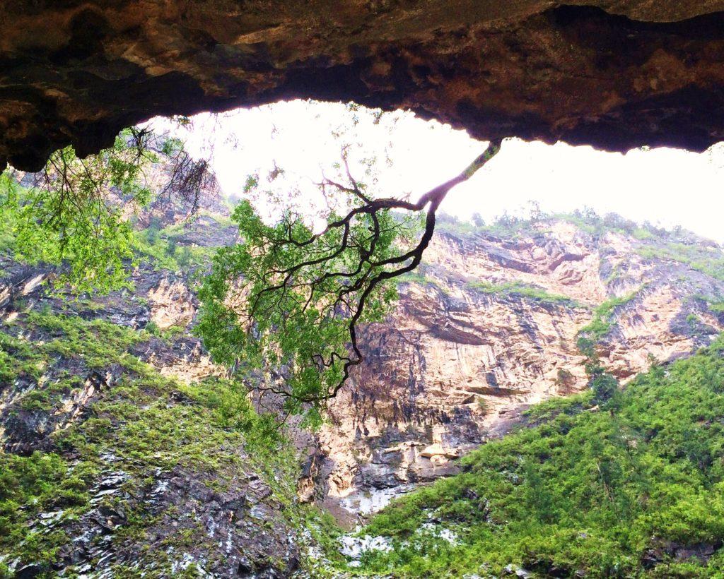 Au sud des nuages Balagezong roche et arbres à pic